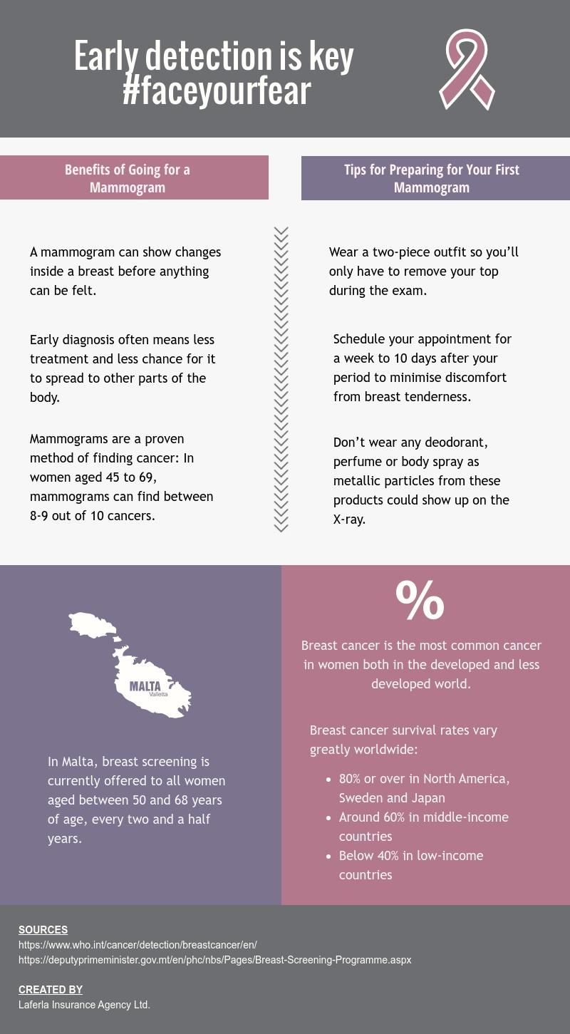 Laferla-Insurance-infographic